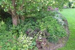Trvalkové záhony lemující plot